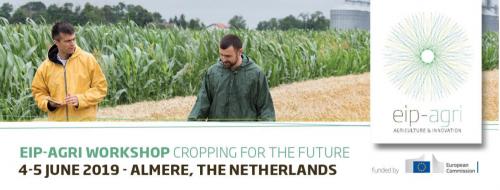 EIP AGRI workshop intercropping